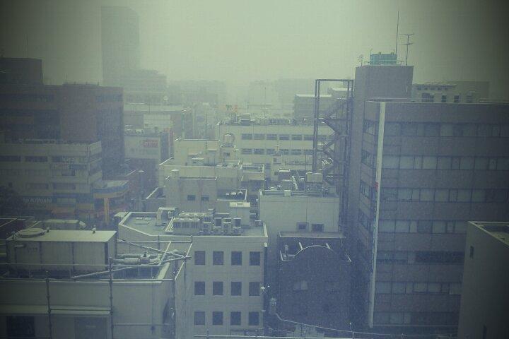 埼玉は大雪。